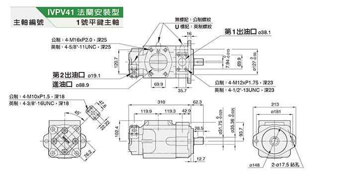 IVPV41双联泵