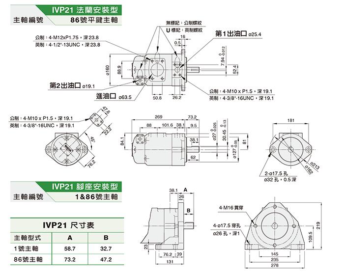 IVP21双联泵