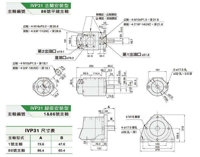 IVP31双联泵